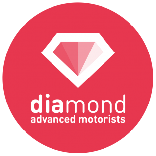 Learning to Drive_icon_11_diamond